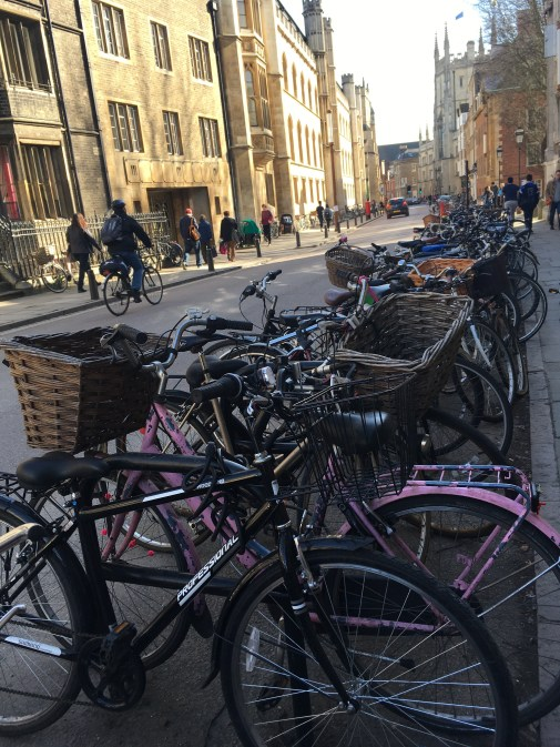 Des vélos à Cambridge