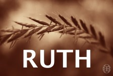 Image result for WHAT CAN WE LEARN FROM RUTH'S LOYALTY