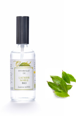 Laurier noble Bio 50ml ou 100ml
