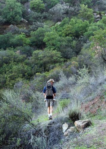 Fox Canyon Trail on Valley View Preserve