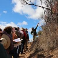 Lanny Kauffer leads a WAO Hike