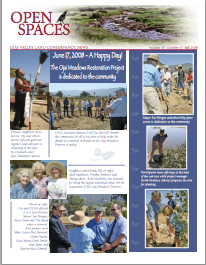 Spaces Newsletter – Fall 2008 (PDF)