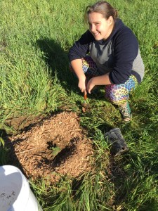 OVLC Restoration Volunteer Highlights