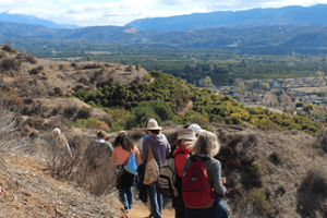 National Trails Day – Free Guided Nature Hikes and Walks
