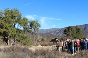 Guided Nature Hike and Restoration Tour
