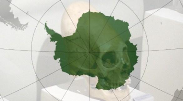 crânio-alongado-na-Antártica