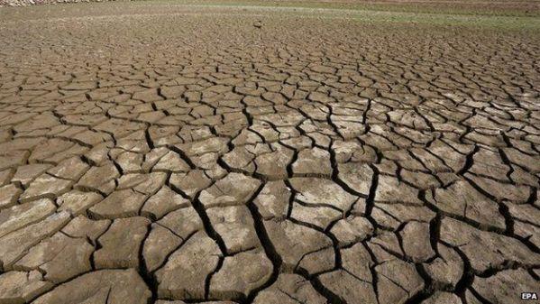 Terra entra em nova fase de extinção