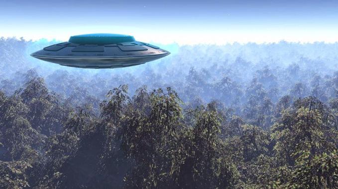 A floresta de Hoia Baciu: Área de grande atividade de OVNIs, assombrada, ou ambas?