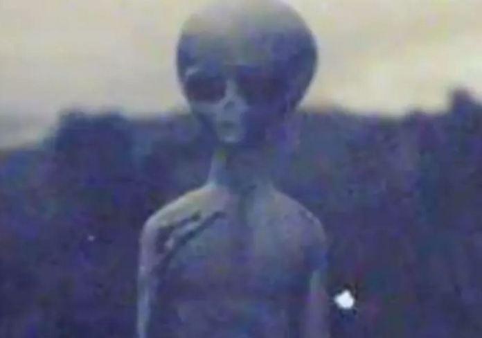 Teria alienígena sido morto