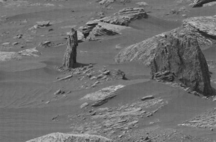 tronco petrificado de árvore em Marte