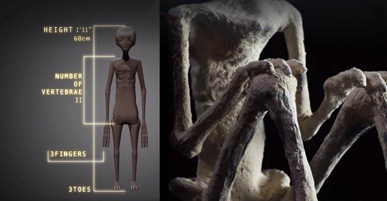 Nova múmia anômala de Nazca é revelada para a Internet (e outras informações) - ATUALIZADO 1