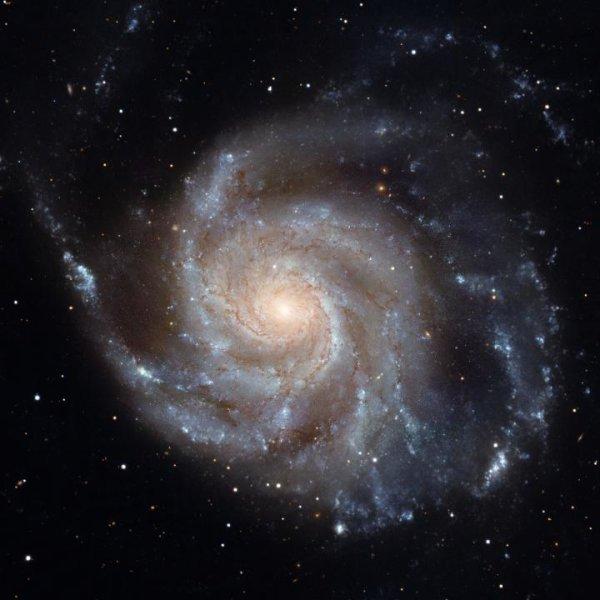 Cientistas descobrem que somos seres intergalácticos 1
