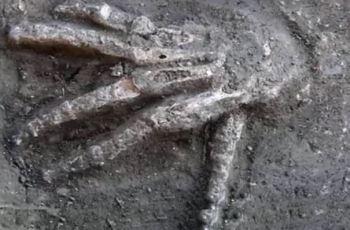 Mãos gigantes