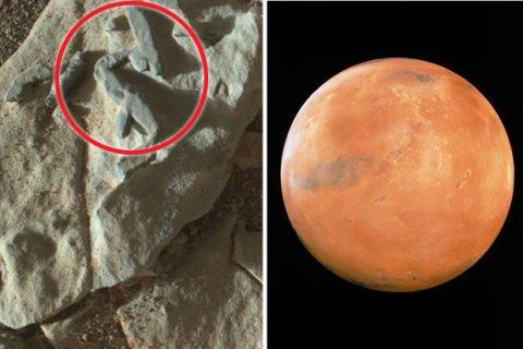 NASA precisa reconhecer sinais de vida em Marte