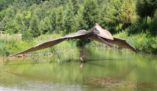 Enorme criatura alada é avistada várias vezez