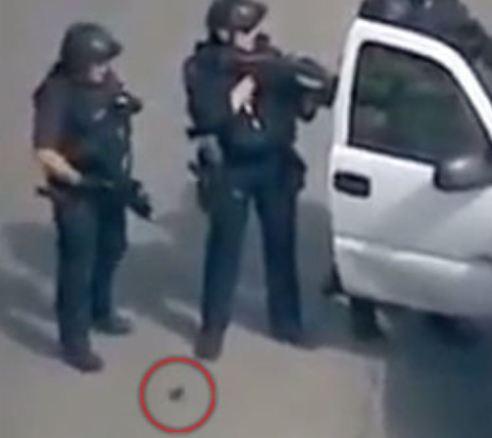 """""""Criatura"""" sai da perna de policial"""
