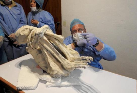 """Caso das múmias """"alienígenas"""" de Nazca pode ter sido desvendado"""