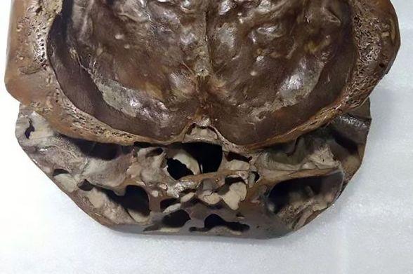 """Escritor compartilha fotos de """"crânio alienígena real"""""""
