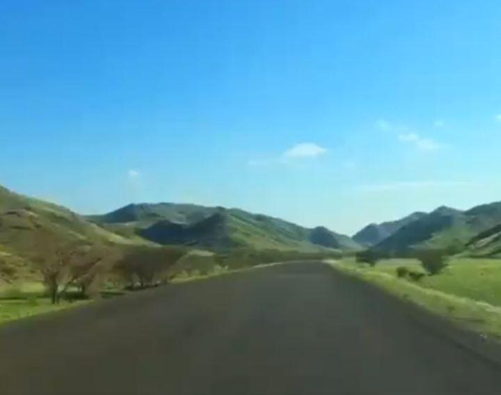 Deserto fica verde na Arábia Saudita
