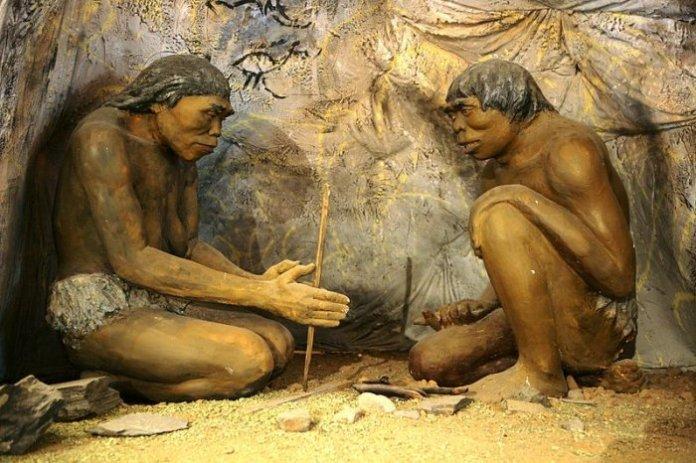 descobrir se os seres humanos realmente já foram peludos