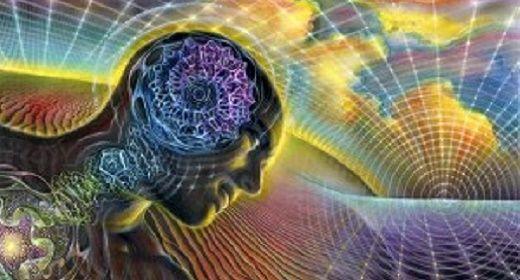 seres humanos podem observar o quântico