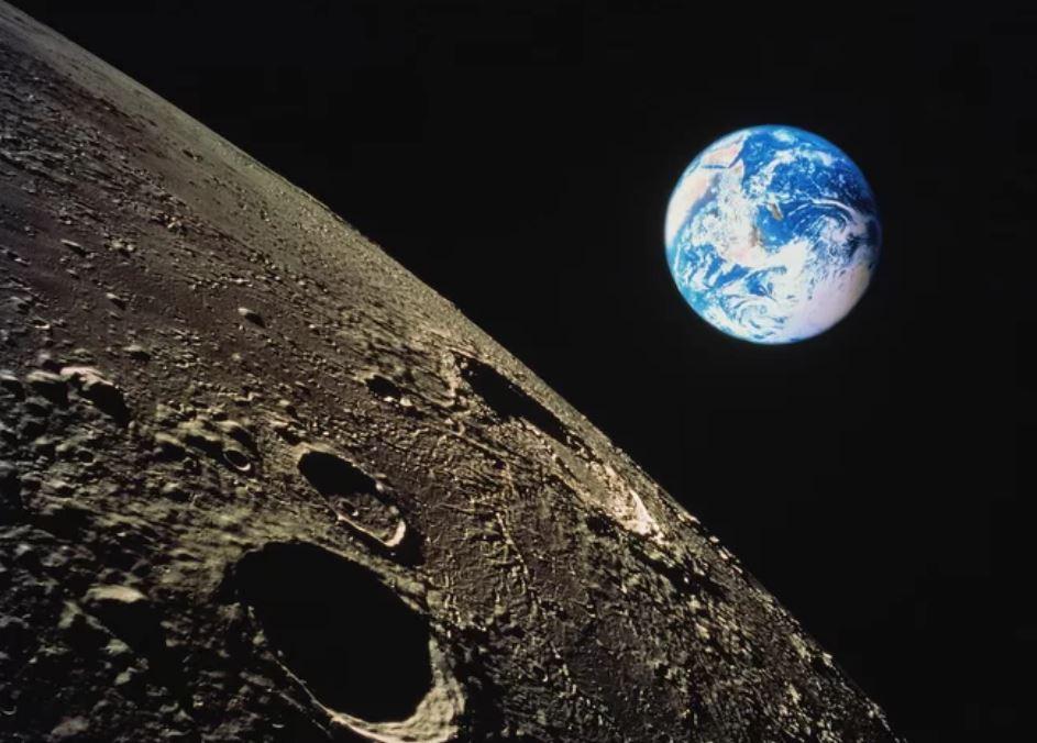 Neste momento há plantas e bichos na Lua