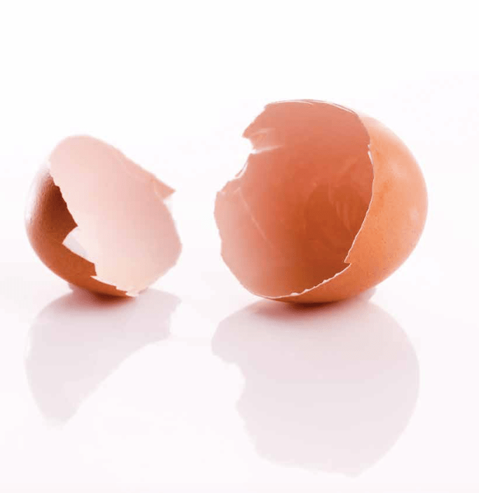 In an egg shell? we will be happy to help with whatever your company may need, egg-wise!