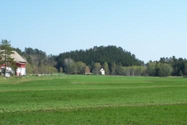 Prestefjellet sett fra Nordhagen. Den runde formasjonene er tilgrodd av gran, men en kan ane at området var forholdsvis lett å forsvare.
