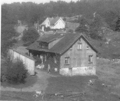 """Bildet viser det gamle huset på Ilebekk """"Der nede"""" som ble revet omkr. 1950. I bakgrunnen huset til Torgeir Ilebekk """"der heime"""", og lengst bak skimtes """"Der oppe"""" hvor Gerd Torhild og Per Fuskeland bor nå. Den ene delen av """"Der nede"""" ble flyttet til den nye Ilebekk-gården som nå er overtatt av Thor Sangesland. Loftsetasjen ble flyttet til Mushom og bygd som hytte der."""