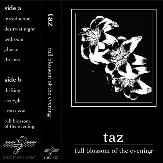 Taz Full Blossom of the