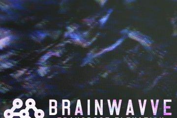 Brainwavve