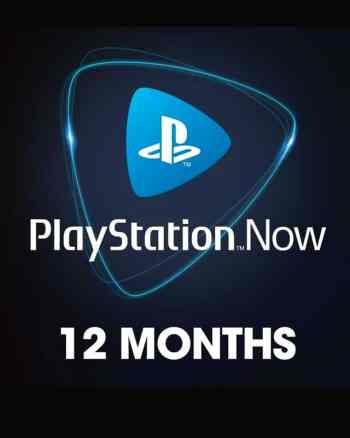 12 Month PS NOW