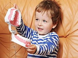 ребенок играет с моделью зуба