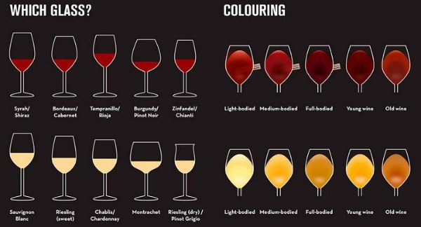 guide-to-wine