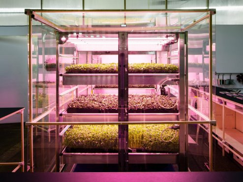 ikeas-space10-hydroponic-vertical-farm-2