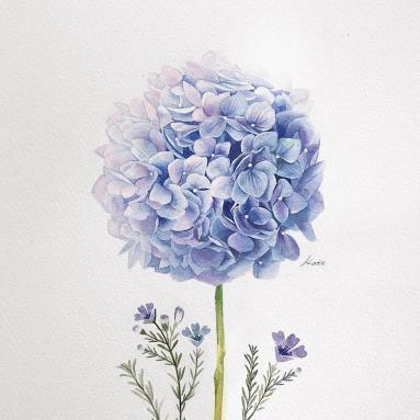 how-to-draw-a-flower-kate-kyehyun-park-4 (1)