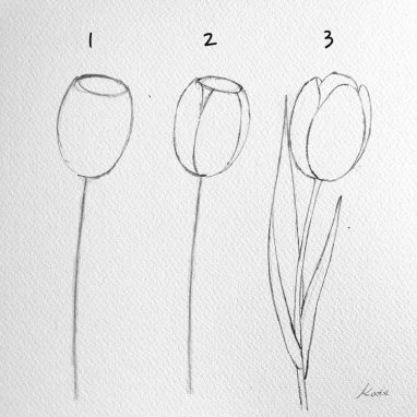 how-to-draw-a-flower-kate-kyehyun-park-7 (1)