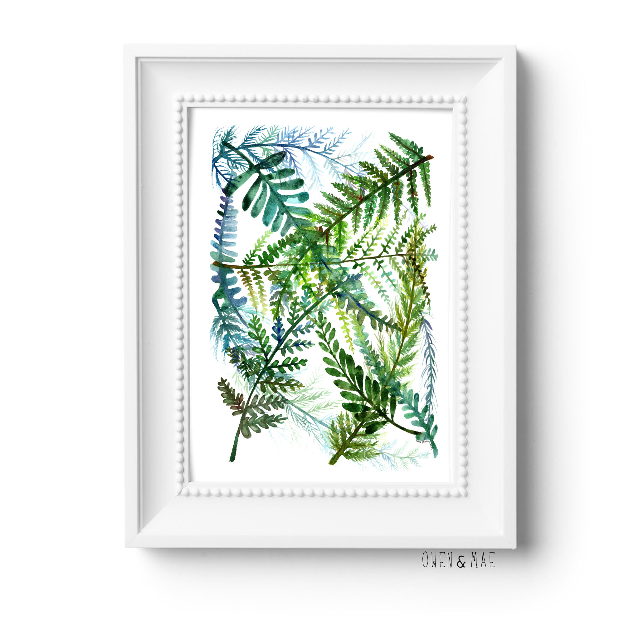 Watercolor Fern Print in white frame