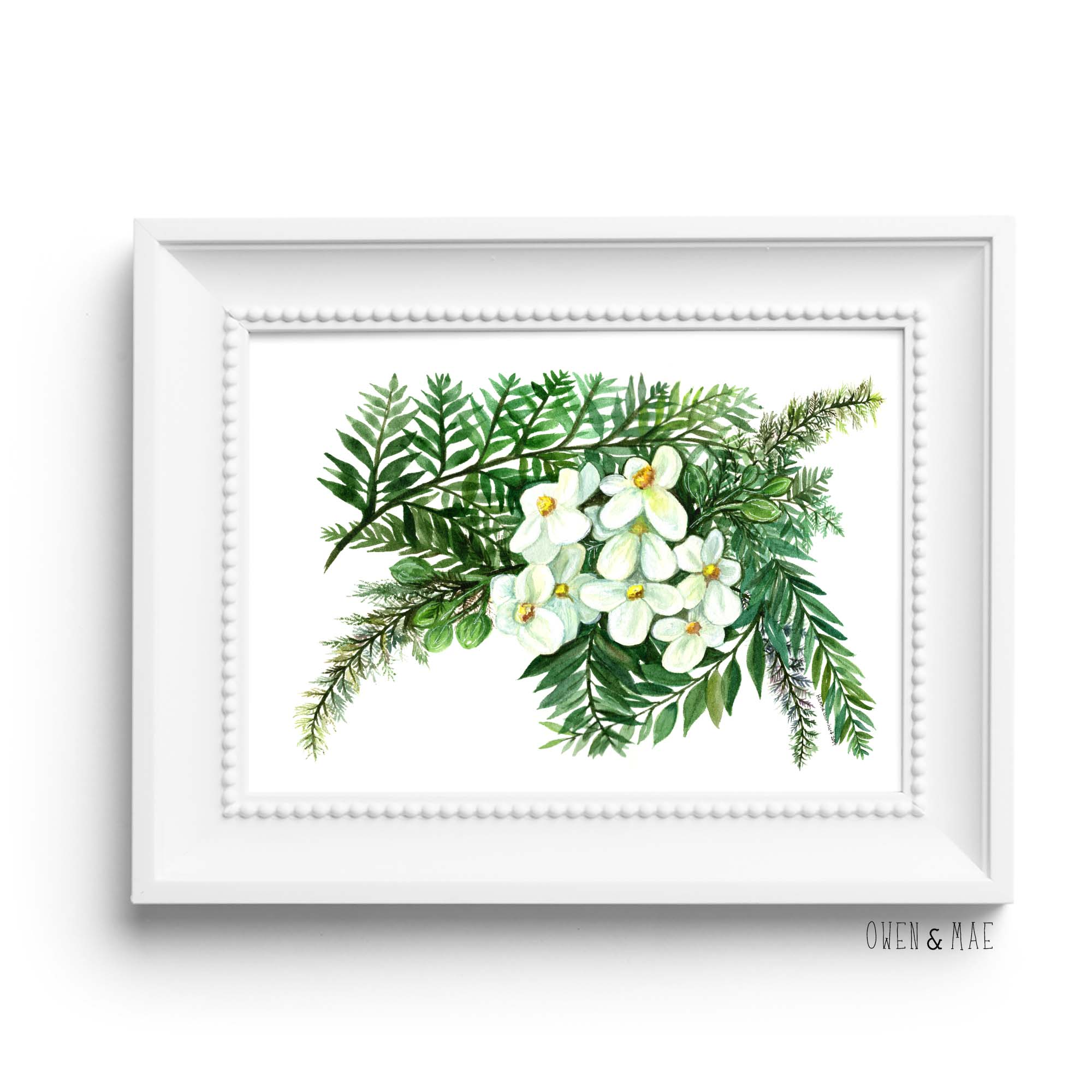 Fern Watercolor Illustration