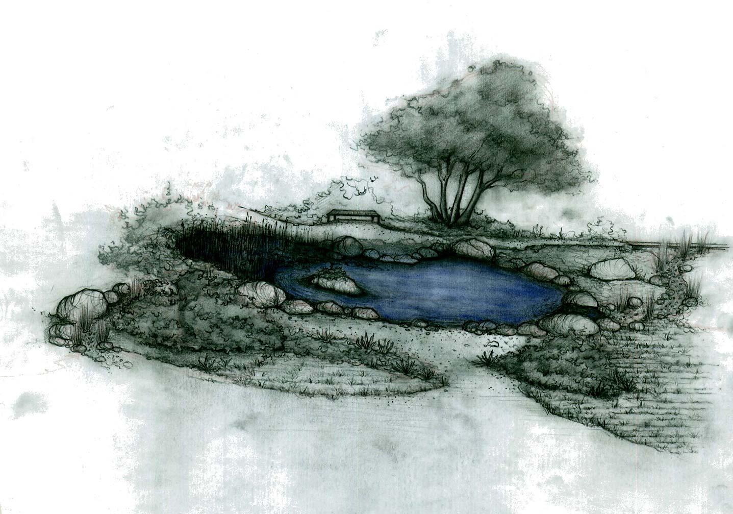 Landscape Design Questionnaire