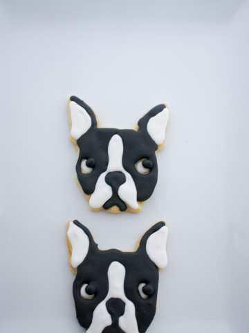 Boston Terrier Cookies