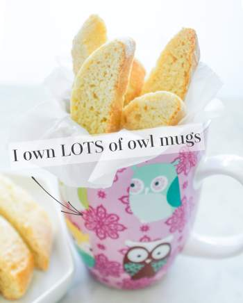 Owl mug with biscotti