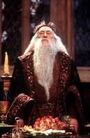 Michael Gambon as Dumbledore
