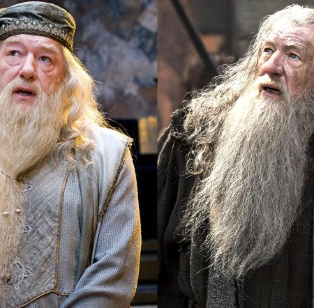 Quiz: Who said it - Dumbledore Vs Gandalf 9
