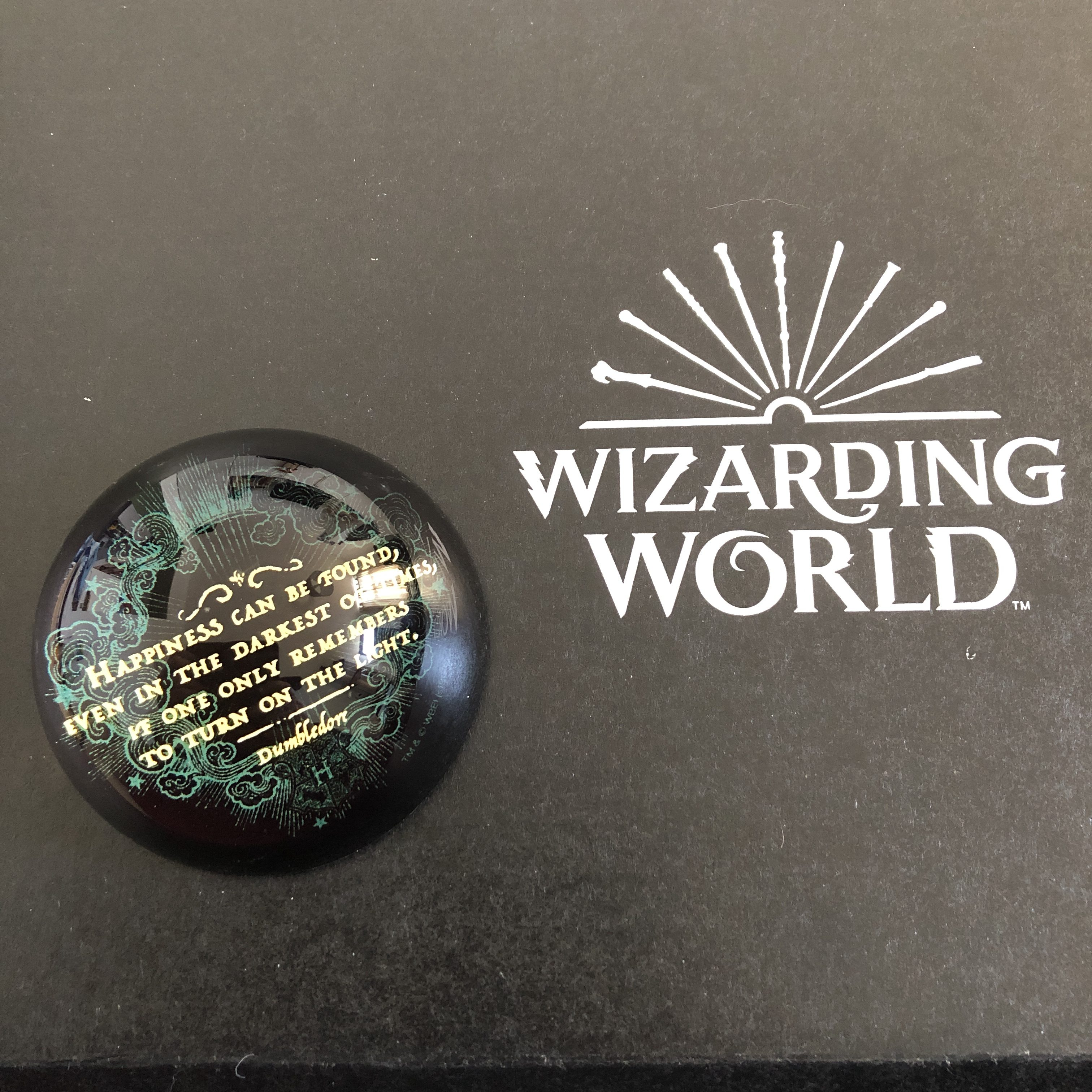 Harry Potter paperweight