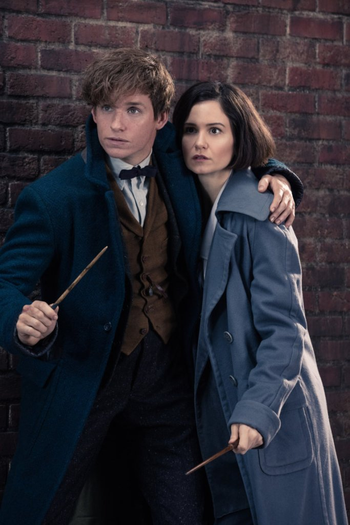 Why Newt Scamander and Harry Potter were different kinds of Chosen One 1
