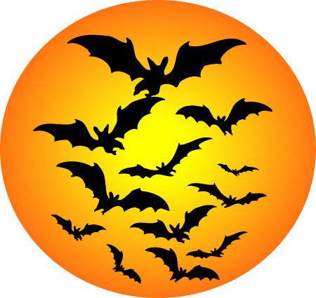 Owlkids | It's Bat Appreciation Month! - Owlkids (450 x 425 Pixel)