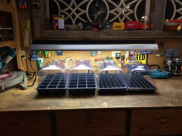 Seed-Starting Setup