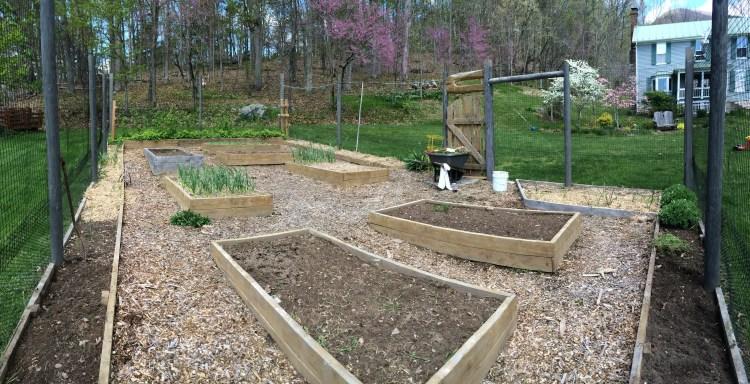 2015 Apr 27 In the Garden
