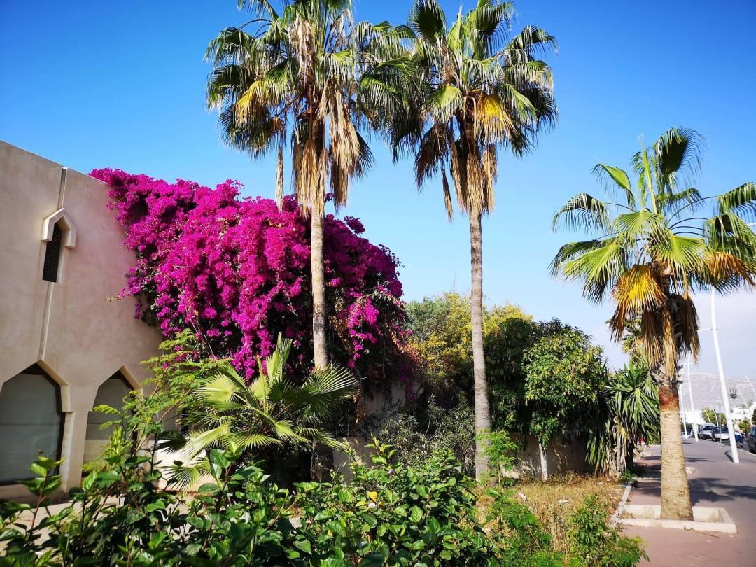Dlaczego warto zwiedzić Maroko zimą